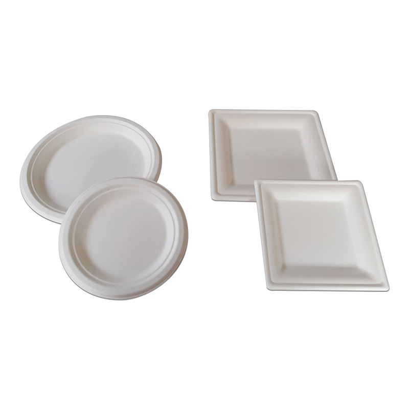 Convertec-Corrugated-Packaging-sugar-cane-plates-sqaure-round-2-sizes-